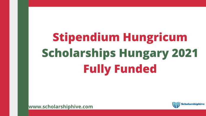Stipendium Hungricum Scholarships Hungary 2021 Fully Funded